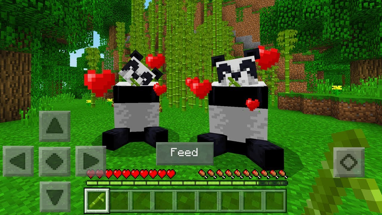 how to tame a panda in minecraft java